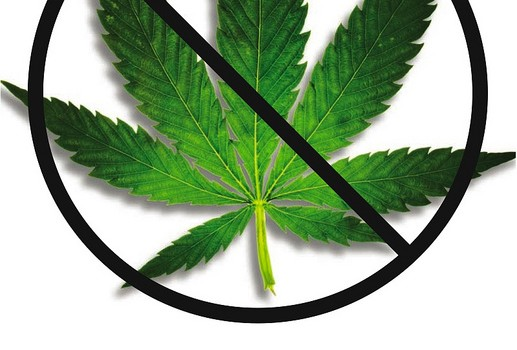 an introduction to the comparison of alcohol and marijuana A comparison of motives for marijuana  the purpose of this study was to examine similarities and differences across a common set of motives for alcohol and.