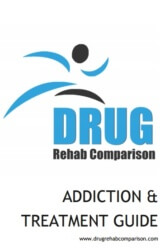 Addiction Treatment Guide